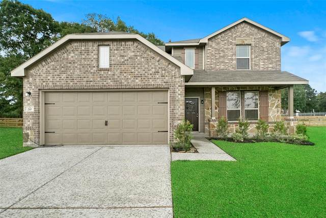 22632 Tree Monkey Road, New Caney, TX 77357 (MLS #95569877) :: Connect Realty