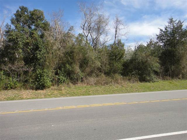 Tract 11&12 Hwy 149, Montgomery, TX 77316 (MLS #95582913) :: The Jill Smith Team