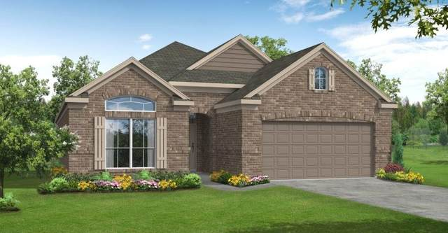 2802 Saw Palmetto Trail, Katy, TX 77493 (MLS #95620059) :: The Heyl Group at Keller Williams