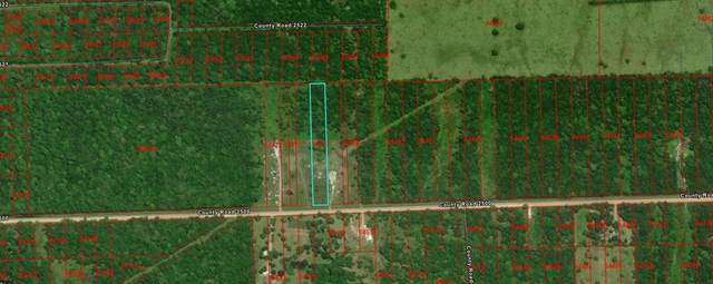 0 County Rd  2500, Liberty, TX 77575 (MLS #95676187) :: All Cities USA Realty