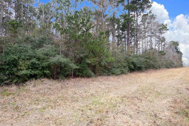 A0467 Reynolds George Tract 2, Magnolia, TX 77354 (#95721997) :: ORO Realty