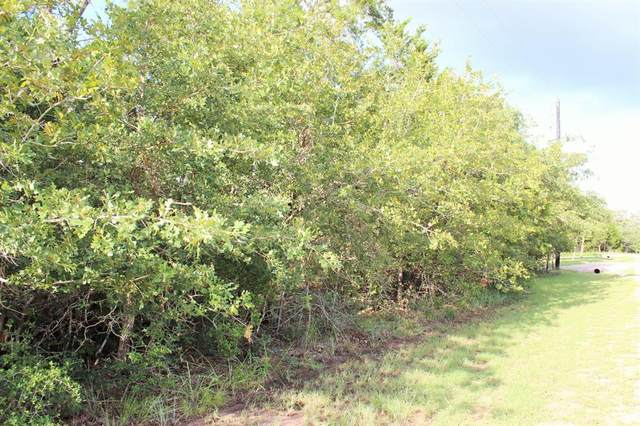 459 Berry Lane, Somerville, TX 77879 (MLS #95742152) :: The Wendy Sherman Team