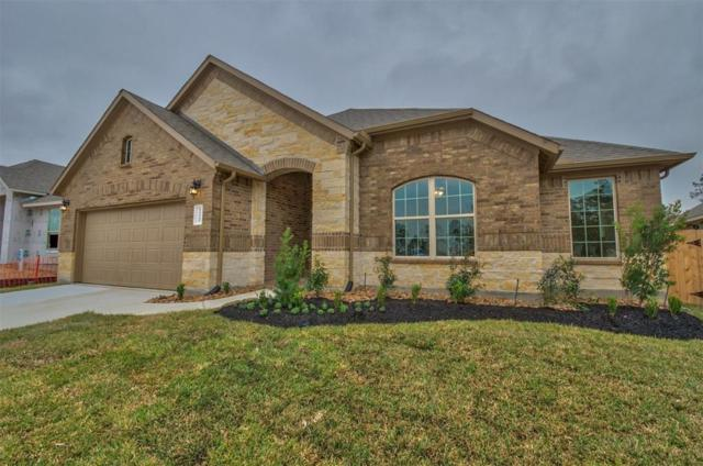 14145 Emory Peak Court, Conroe, TX 77384 (MLS #95773286) :: Texas Home Shop Realty