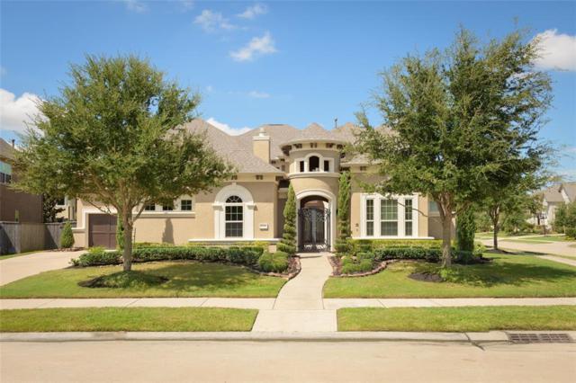 28515 Tall Juniper Hill Drive, Katy, TX 77494 (MLS #9580866) :: Christy Buck Team