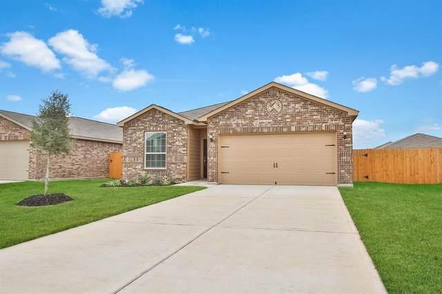21314 Rachel Manor Drive, Hockley, TX 77447 (MLS #9581392) :: Guevara Backman