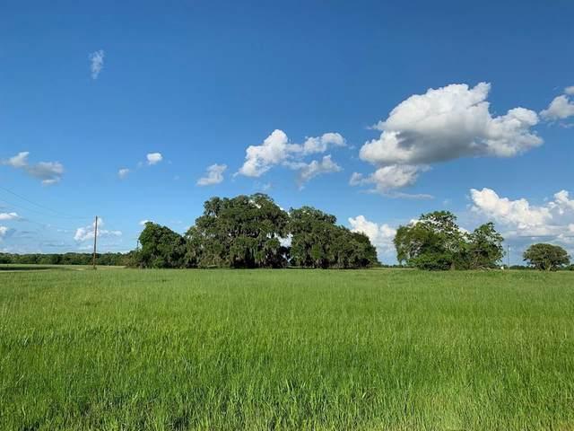 801 Wagon Wheel Trail, Angleton, TX 77515 (MLS #9582897) :: The Heyl Group at Keller Williams