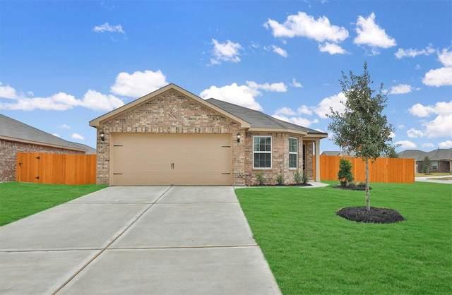 1110 Rare Fancy Drive, Iowa Colony, TX 77583 (MLS #95922850) :: The Freund Group