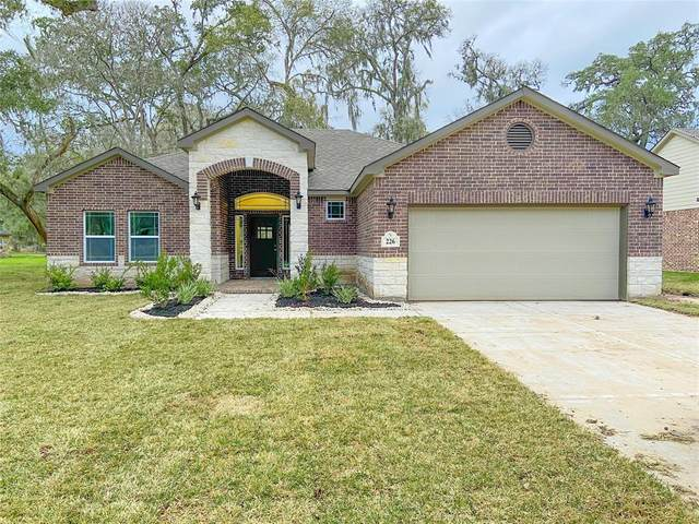 226 Montclaire Drive, West Columbia, TX 77486 (MLS #95956768) :: Michele Harmon Team