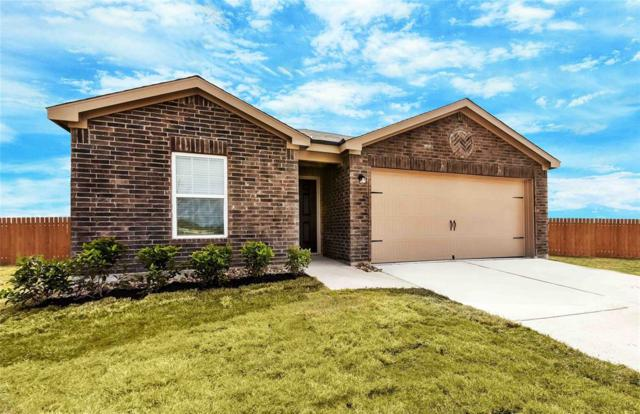 9518 Red Garnet Drive, Iowa Colony, TX 77583 (MLS #96010877) :: Green Residential