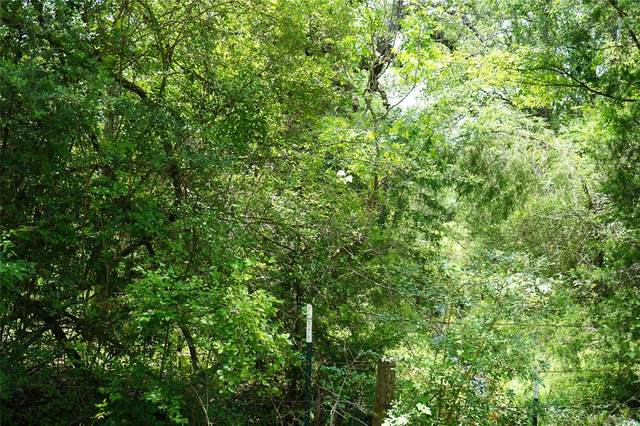 Lot 5 TBD County Road 190, Anderson, TX 77830 (MLS #96028517) :: The Sansone Group
