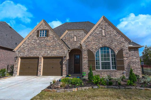 38 Sweet Creek Lane, Fulshear, TX 77441 (MLS #96047706) :: See Tim Sell