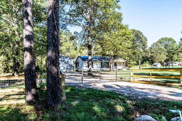 68 Vick Road, New Waverly, TX 77358 (MLS #96092350) :: Caskey Realty