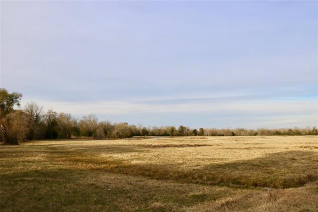 3982 County Road 117, Bedias, TX 77831 (MLS #96131235) :: The SOLD by George Team