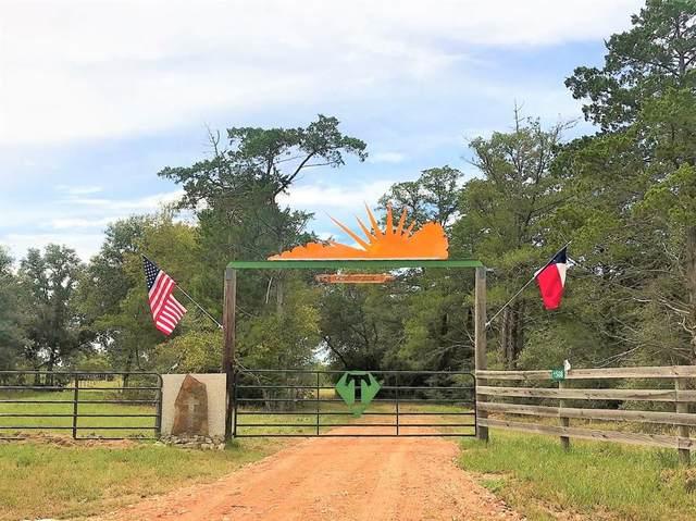 1508 Warschak Schuette Road, New Ulm, TX 78950 (MLS #96271695) :: The Wendy Sherman Team