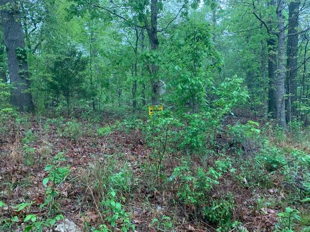 Lot 7 Woodcock Lane, Other, AR 72482 (MLS #96338954) :: The Freund Group