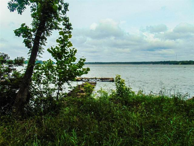 Na Lakefront Drive, Onalaska, TX 77360 (MLS #96340478) :: The Heyl Group at Keller Williams