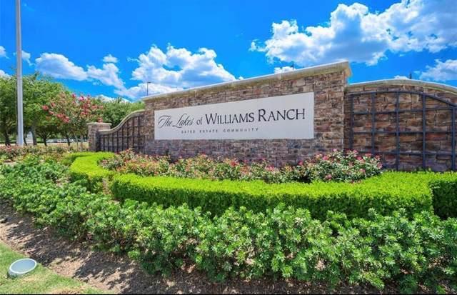 1203 Grand Estates Drive, Richmond, TX 77469 (MLS #96362118) :: Michele Harmon Team