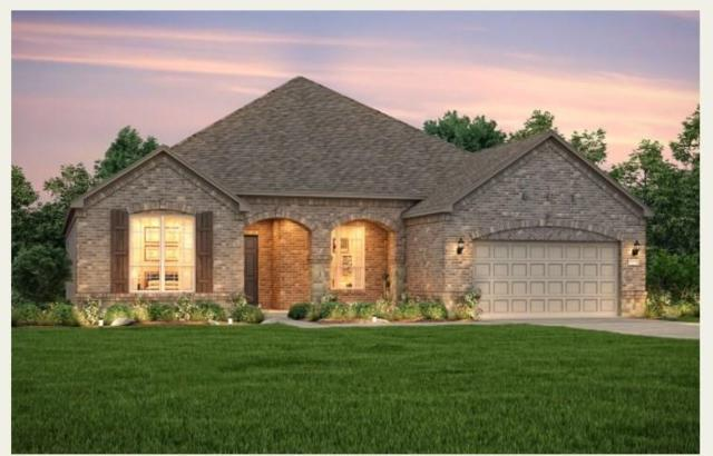 224 Friesian Lane, The Woodlands, TX 77382 (MLS #96461018) :: Glenn Allen Properties