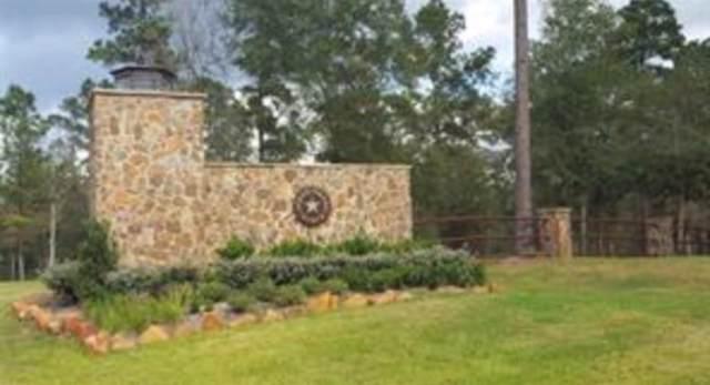 TBD Grand View, Huntsville, TX 77340 (MLS #96466054) :: Ellison Real Estate Team