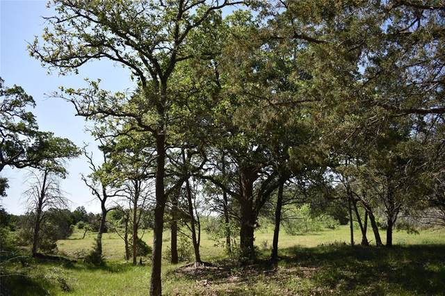 2415 County Road 106, Paige, TX 78659 (MLS #96548594) :: The SOLD by George Team