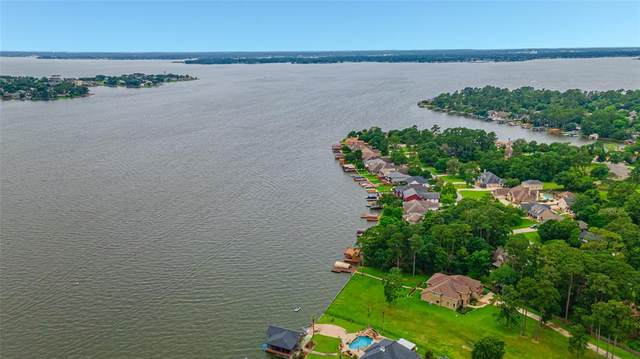 12512 Aries Loop, Willis, TX 77318 (MLS #96565232) :: My BCS Home Real Estate Group