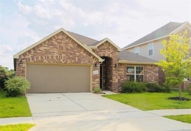 22515 Miramar Bend Drive, Tomball, TX 77375 (MLS #96597814) :: TEXdot Realtors, Inc.