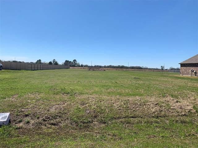 BLK 2 lot 7 Crescent Cross Drive, Needville, TX 77461 (MLS #96657688) :: Guevara Backman