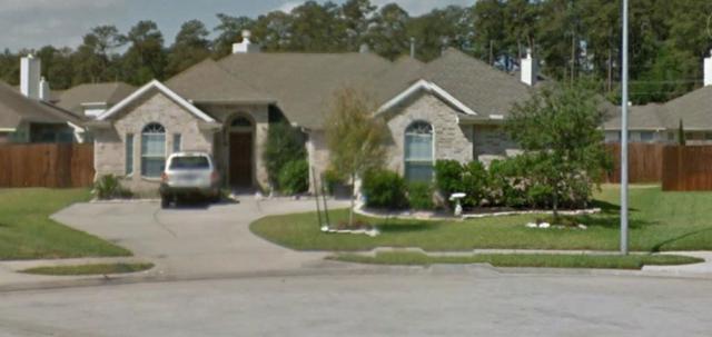 9119 Sandstone Falls, Tomball, TX 77375 (MLS #96657894) :: Grayson-Patton Team