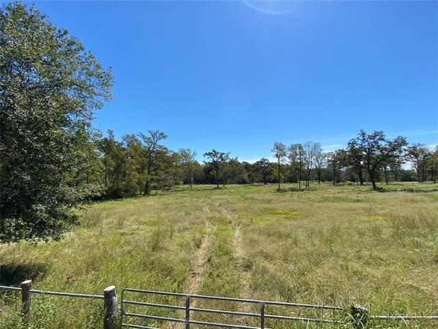 TBD 92 Acres Hwy 90, Madisonville, TX 77864 (MLS #96688218) :: Parodi Group Real Estate