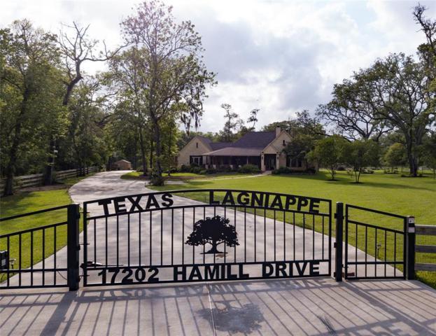 17202 Hamill Drive, Rosharon, TX 77583 (MLS #96703999) :: Texas Home Shop Realty