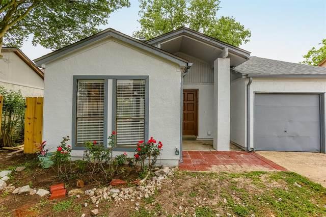 7427 Alcomita Drive, Houston, TX 77083 (MLS #96748365) :: Connect Realty