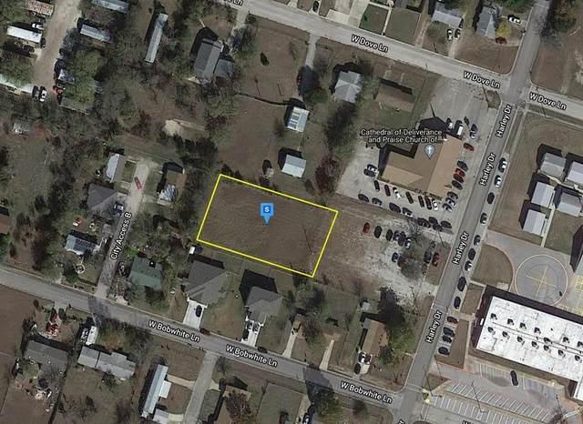 207 W Bobwhite Lane, HARKER HEIGHTS, TX 76548 (MLS #96760137) :: My BCS Home Real Estate Group