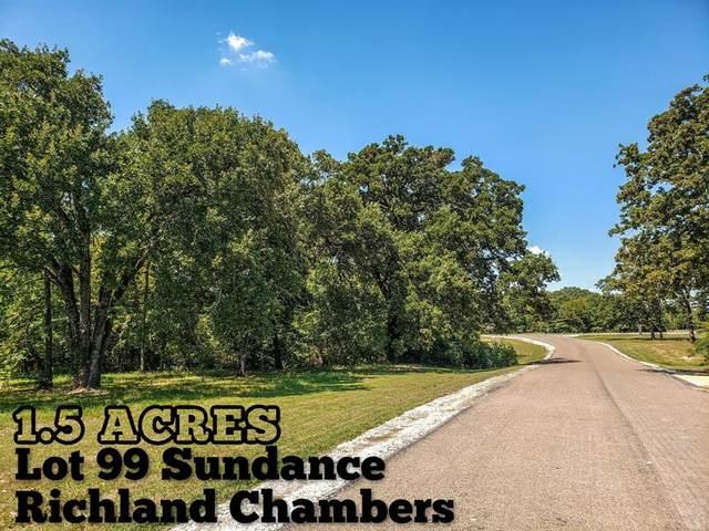 Lot 99 Sundance, Corsicana, TX 75109 (MLS #96921422) :: Green Residential