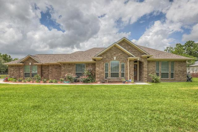 3031 County Road 695B, Alvin, TX 77511 (MLS #96940544) :: Christy Buck Team
