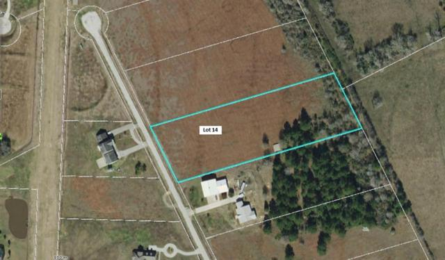 Lot 14 Ponderosa Drive, New Waverly, TX 77358 (MLS #9697107) :: Mari Realty