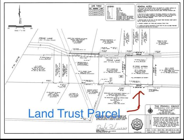 8517 B Prine Lane, Magnolia, TX 77354 (MLS #97023316) :: Green Residential