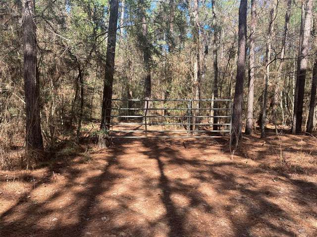 0 Deep Woods Ln, Plantersville, TX 77363 (MLS #97028350) :: The SOLD by George Team