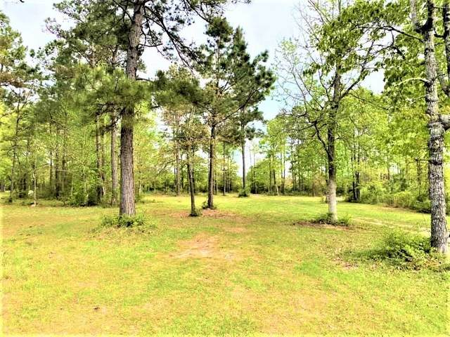 334 Pr 8385, Hillister, TX 77624 (MLS #97057725) :: Connect Realty