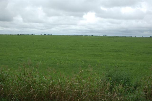 0 County Road 114, Garwood, TX 77442 (MLS #97110152) :: The Collective Realty Group