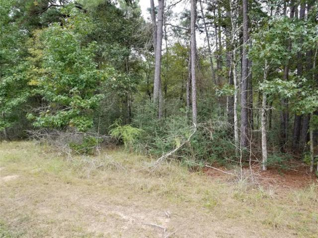 20718 Timber Ridge Drive, Magnolia, TX 77355 (MLS #97115473) :: Caskey Realty