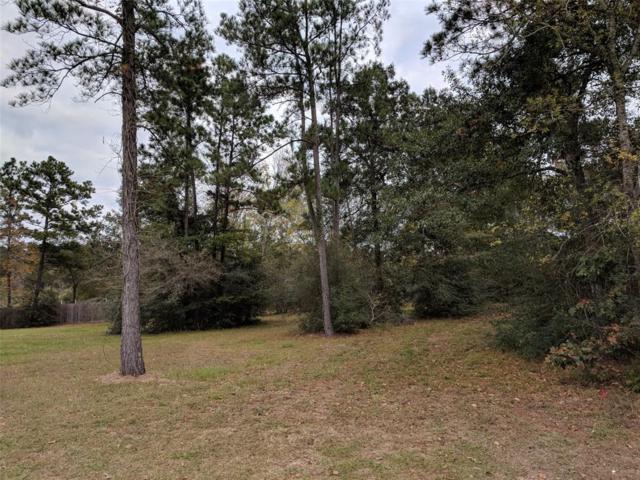 TBD Pebble View Drive, Conroe, TX 77304 (MLS #97125592) :: Magnolia Realty