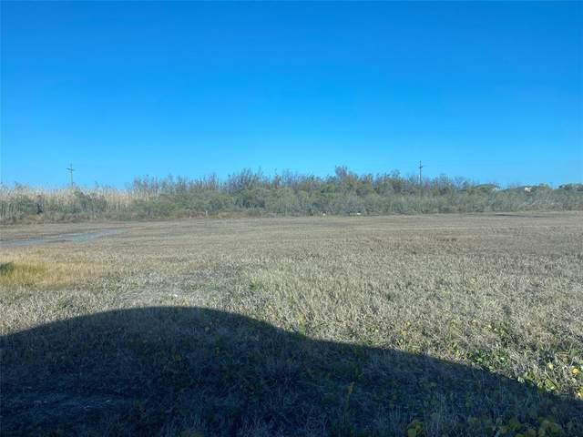 1068 Beach Front Road, Gilchrist, TX 77617 (MLS #97222453) :: Michele Harmon Team