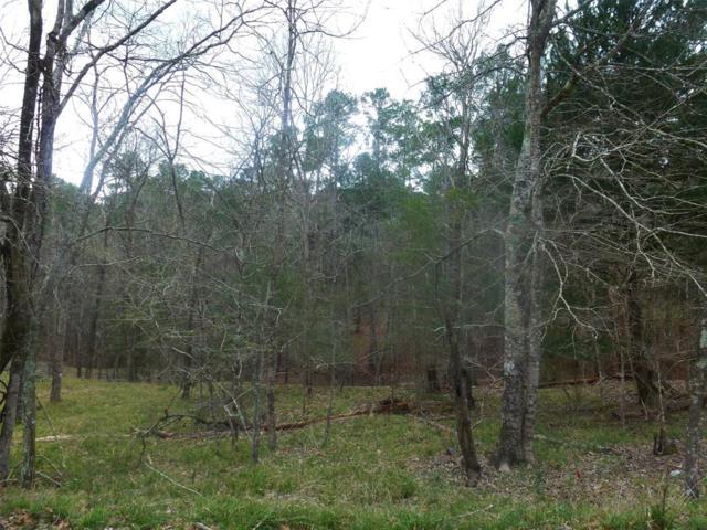 60 S Royale Greens Drive, Coldspring, TX 77331 (MLS #97256301) :: Caskey Realty