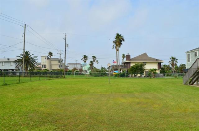 Lot 347 Grayson, Galveston, TX 77554 (MLS #97326627) :: Connect Realty