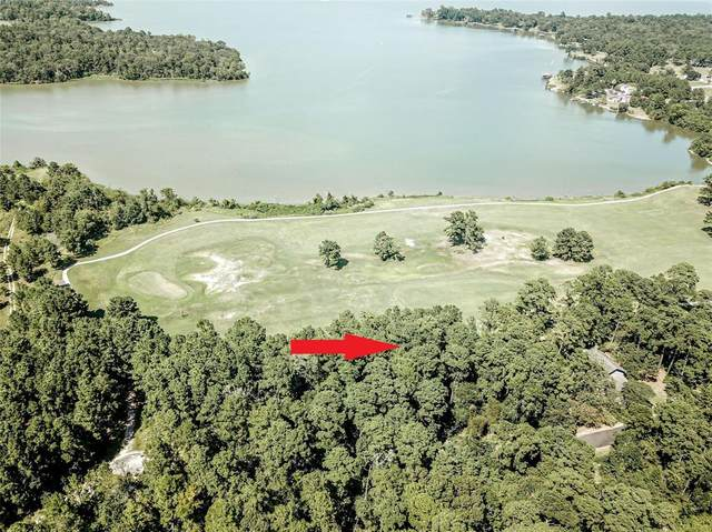 Lot 40 Oakland Hills, Huntsville, TX 77320 (MLS #97348032) :: Keller Williams Realty