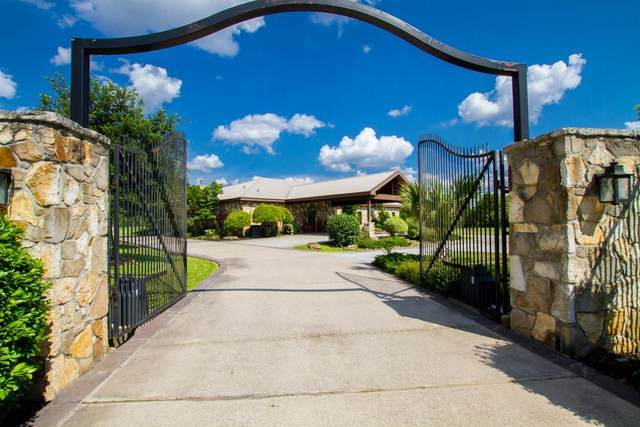 24250 Stuebner Airline Road, Tomball, TX 77375 (MLS #97365530) :: The SOLD by George Team
