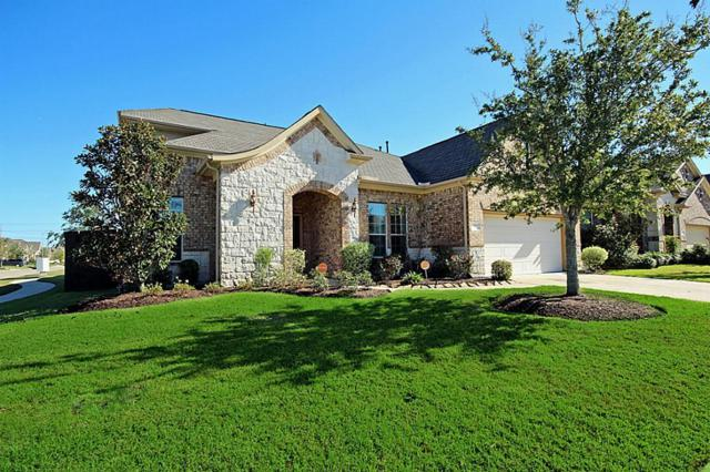 517 W Fork, Webster, TX 77598 (MLS #97378226) :: REMAX Space Center - The Bly Team