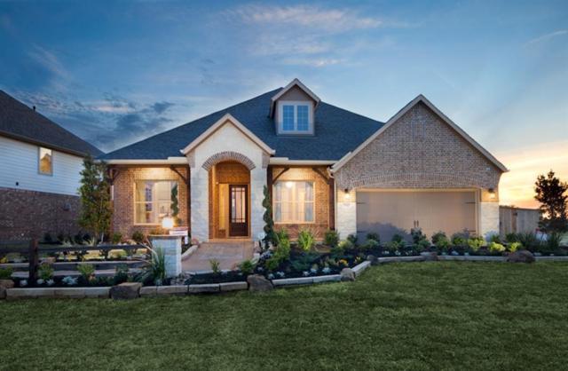 20111 Desert Foal Drive, Tomball, TX 77377 (MLS #97476304) :: Giorgi Real Estate Group