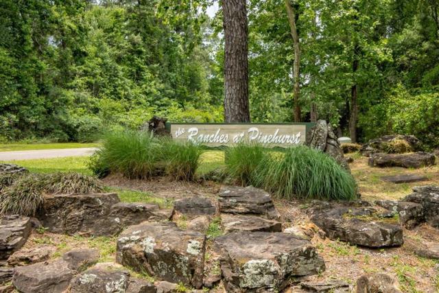 15 Riata Drive, Magnolia, TX 77354 (MLS #97476573) :: Fairwater Westmont Real Estate