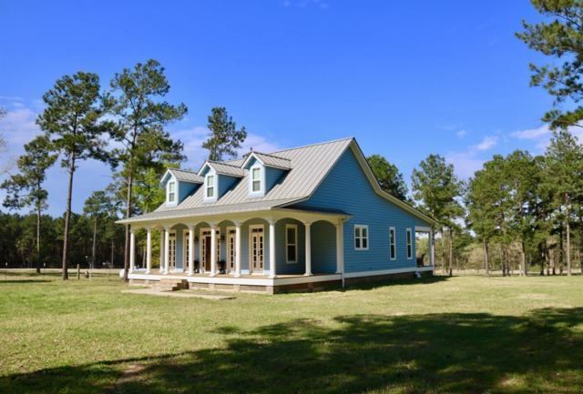 5345 Deep Forest Trail, Navasota, TX 77868 (MLS #97529094) :: Magnolia Realty